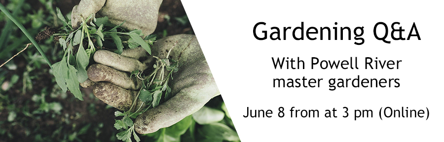 Gardening QA Web slide