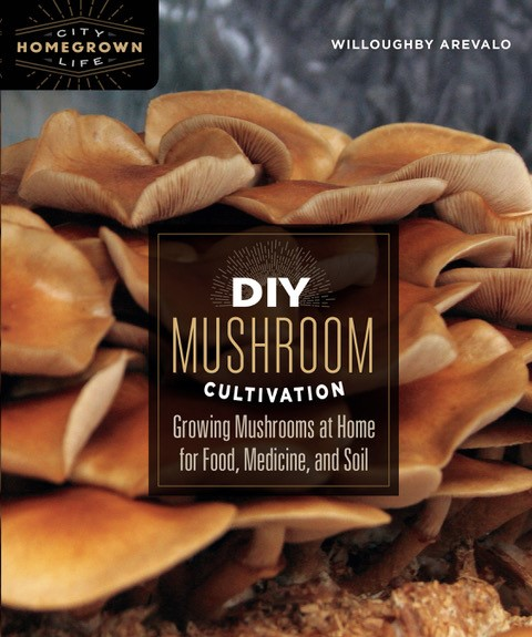 DIY Mushroom Cultivation @ Zoom